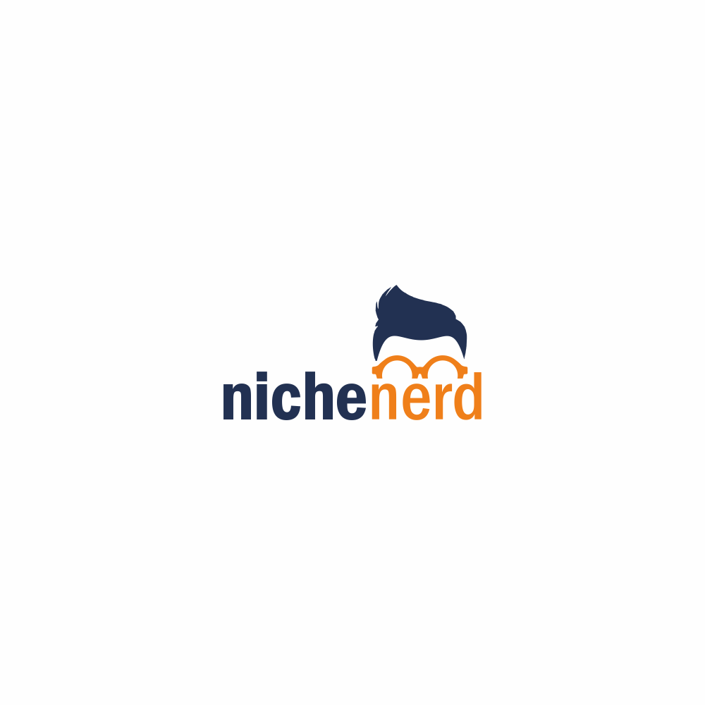 Design A Fun and Clean Logo For Start-Up Business Looking To Help Individuals Choose An Online Niche