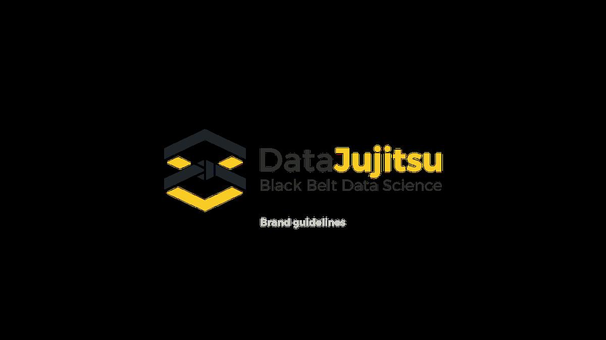 Brand guide for Data Jujitsu