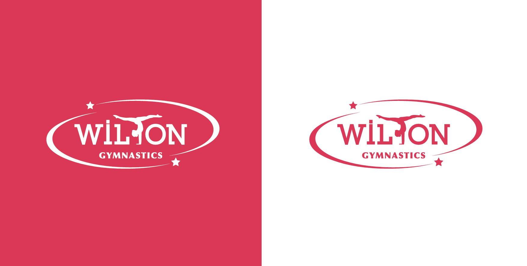 Come help design our team logo for our young enthusiastic gymnasts of Wilton CT.