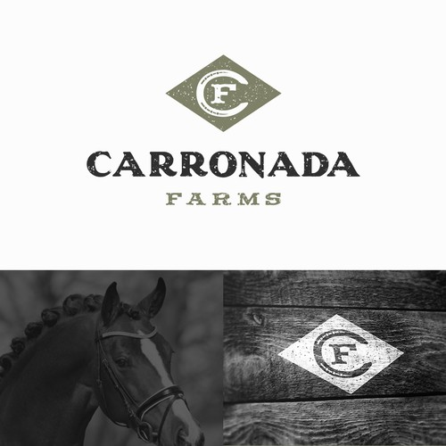 Logo design for horse farm