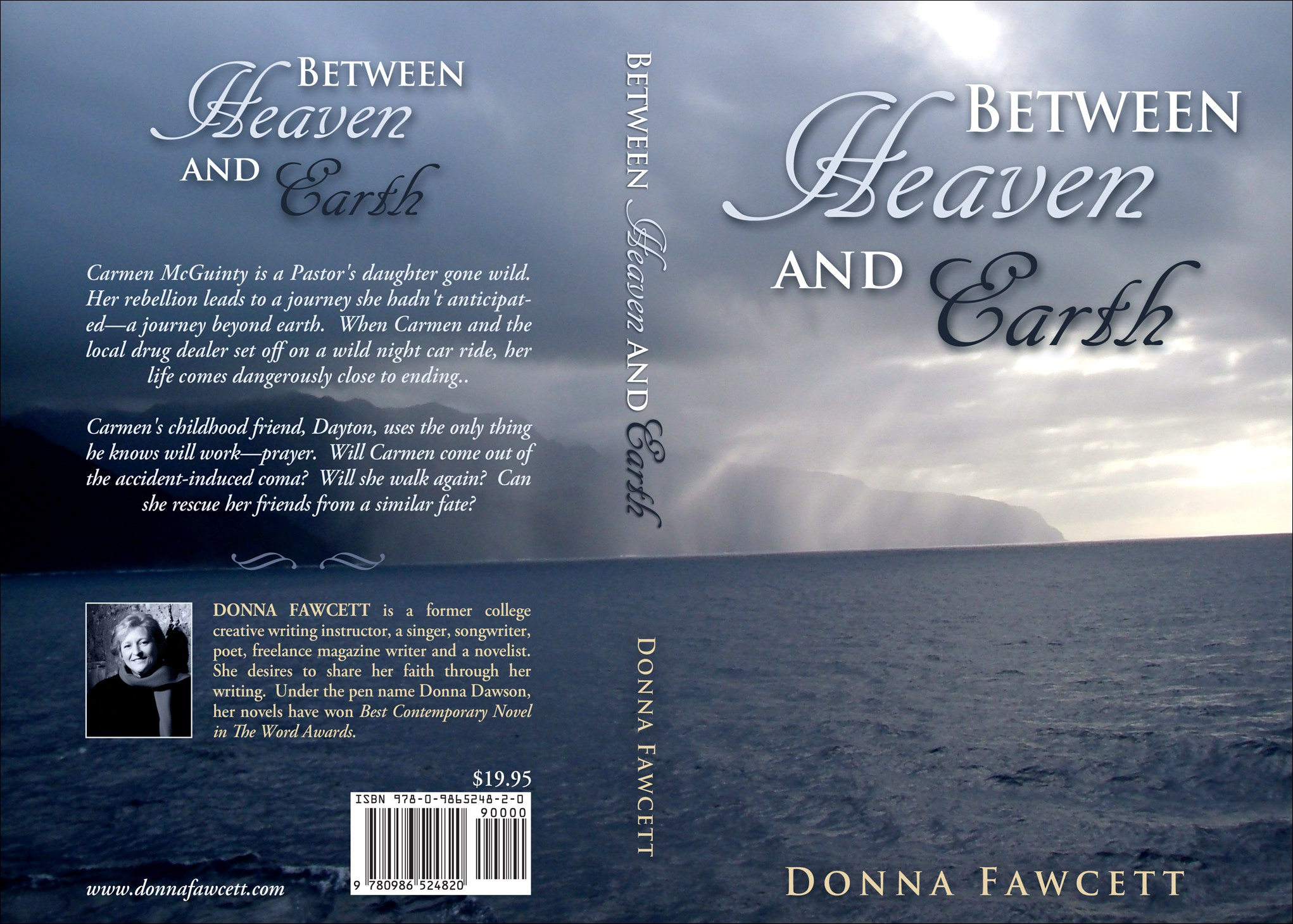 Between Heaven and Earth novel cover art contest