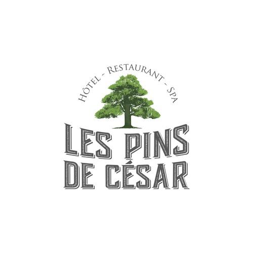 les pins de cesar