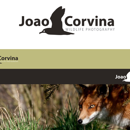 Create the next logo for JCorvina or JC or Joao Corvina