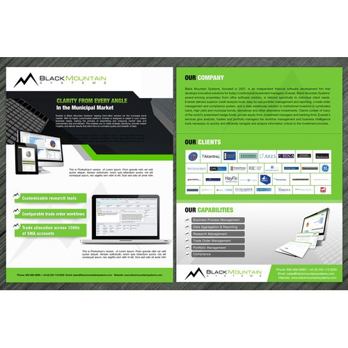 Black Mountain Systems needs a  professional 2-sided brochure