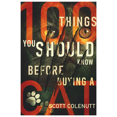100 Things You Should Know Before Buying a Cat