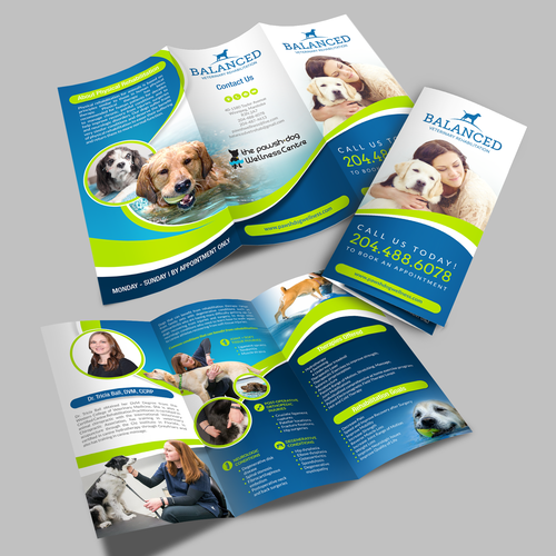 Balanced Veterinary Rehabilitation