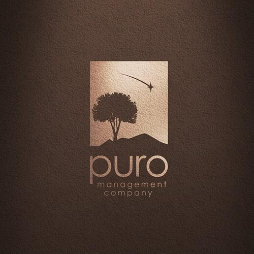 Puro Management Company Logo design project