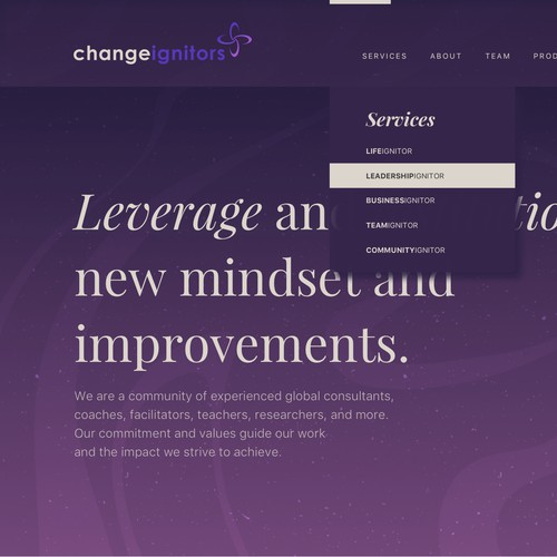Website Design for Change Ignitors