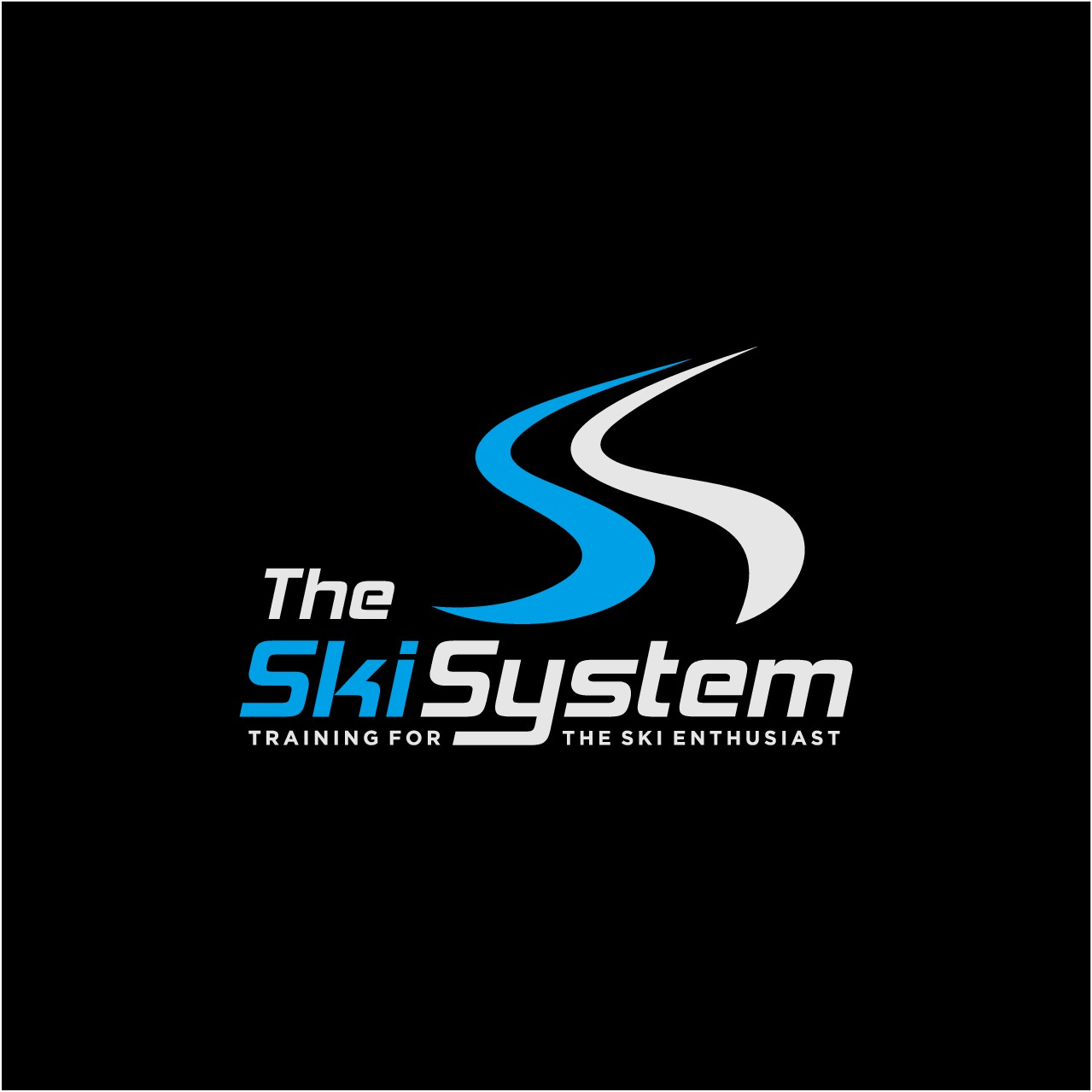 The Ski System