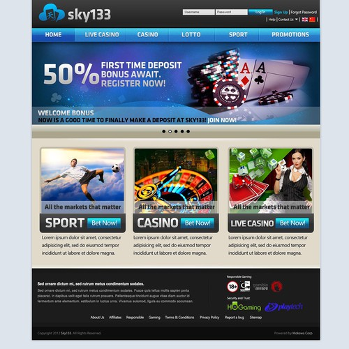 "Online Gambling Site ""Sky133"" Needs New Web Design"