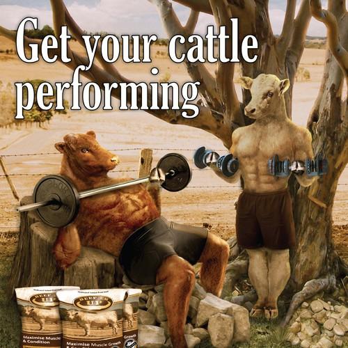 Beef 'em up