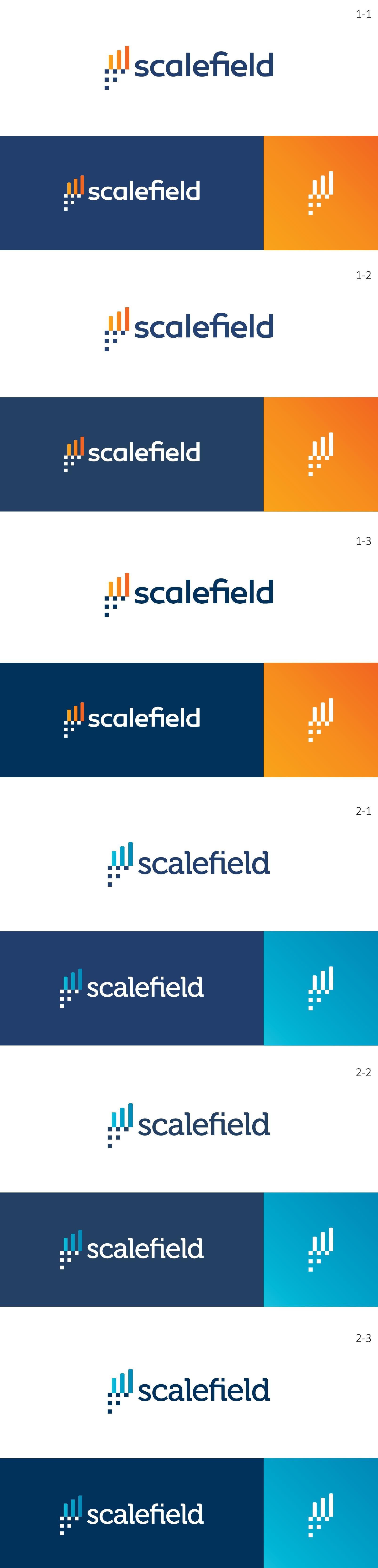 Logo (graphic) design for a High Tech online hosting platform