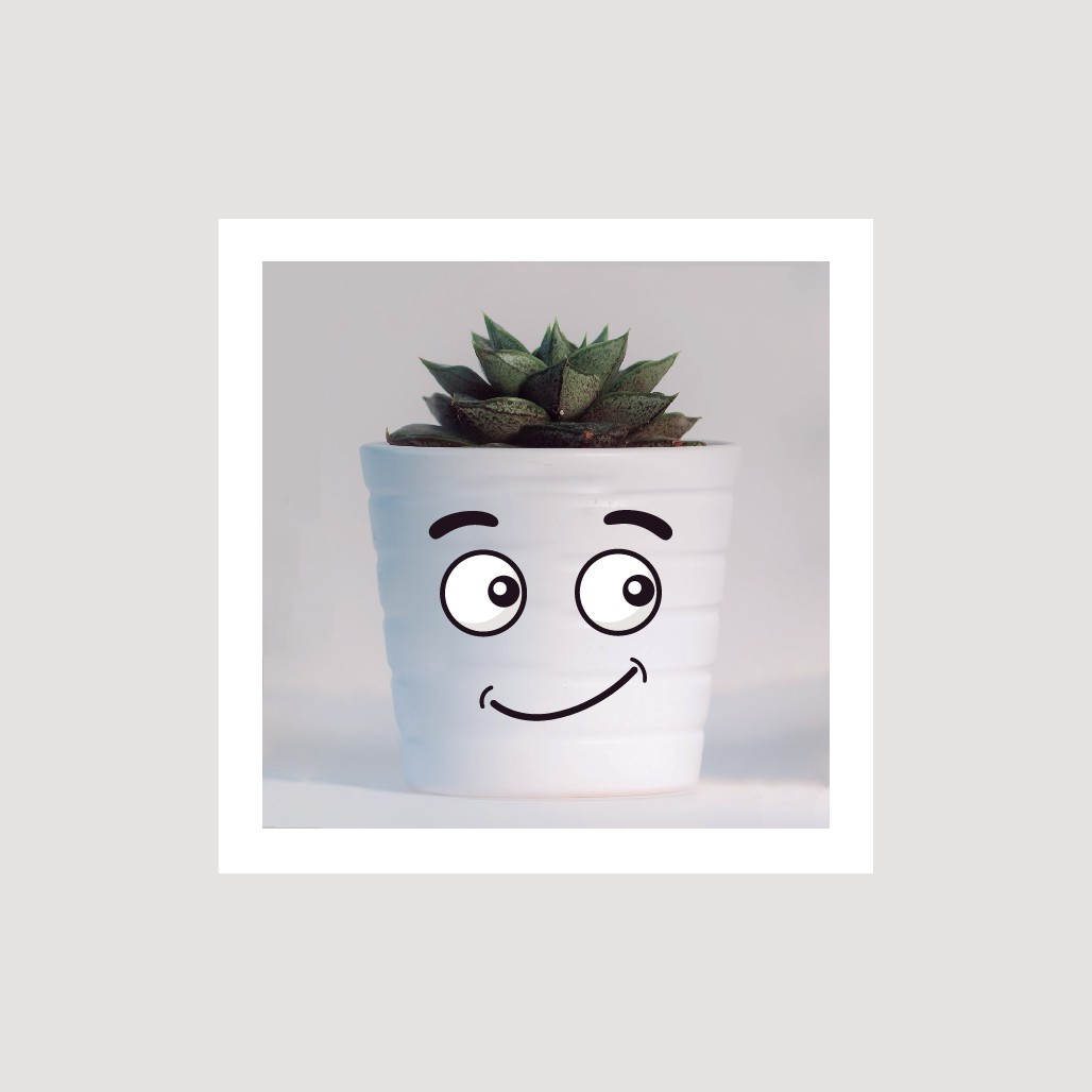Positive face design for flowerpot - fitting for different plants!