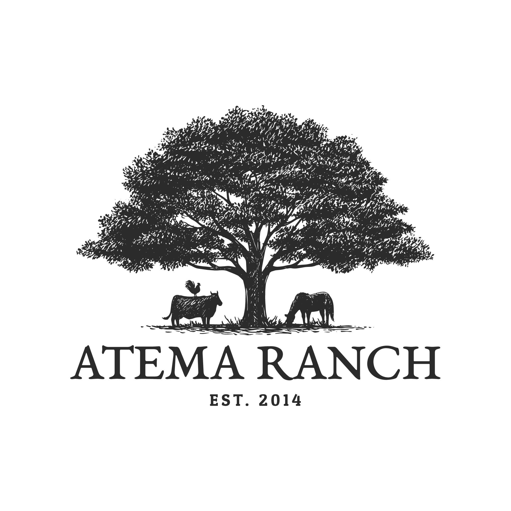 Creative new farm logo for our family ranch!