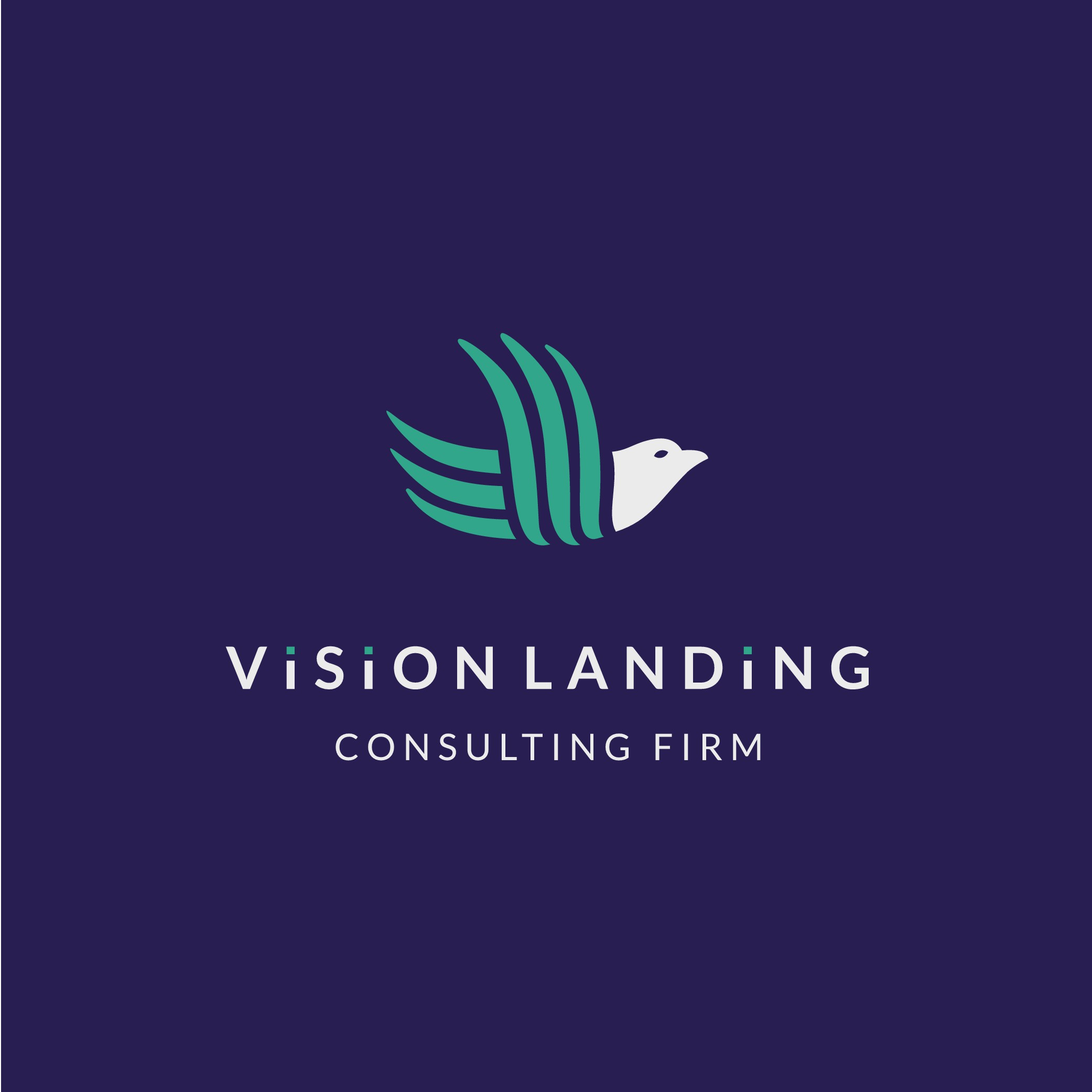 Vision Landig. Consulting firm