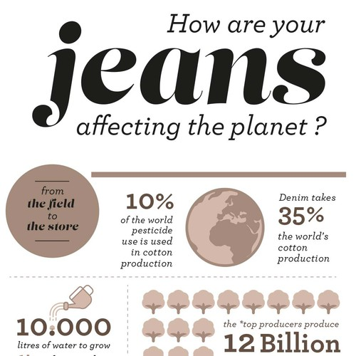 Infographic Design for Jeans