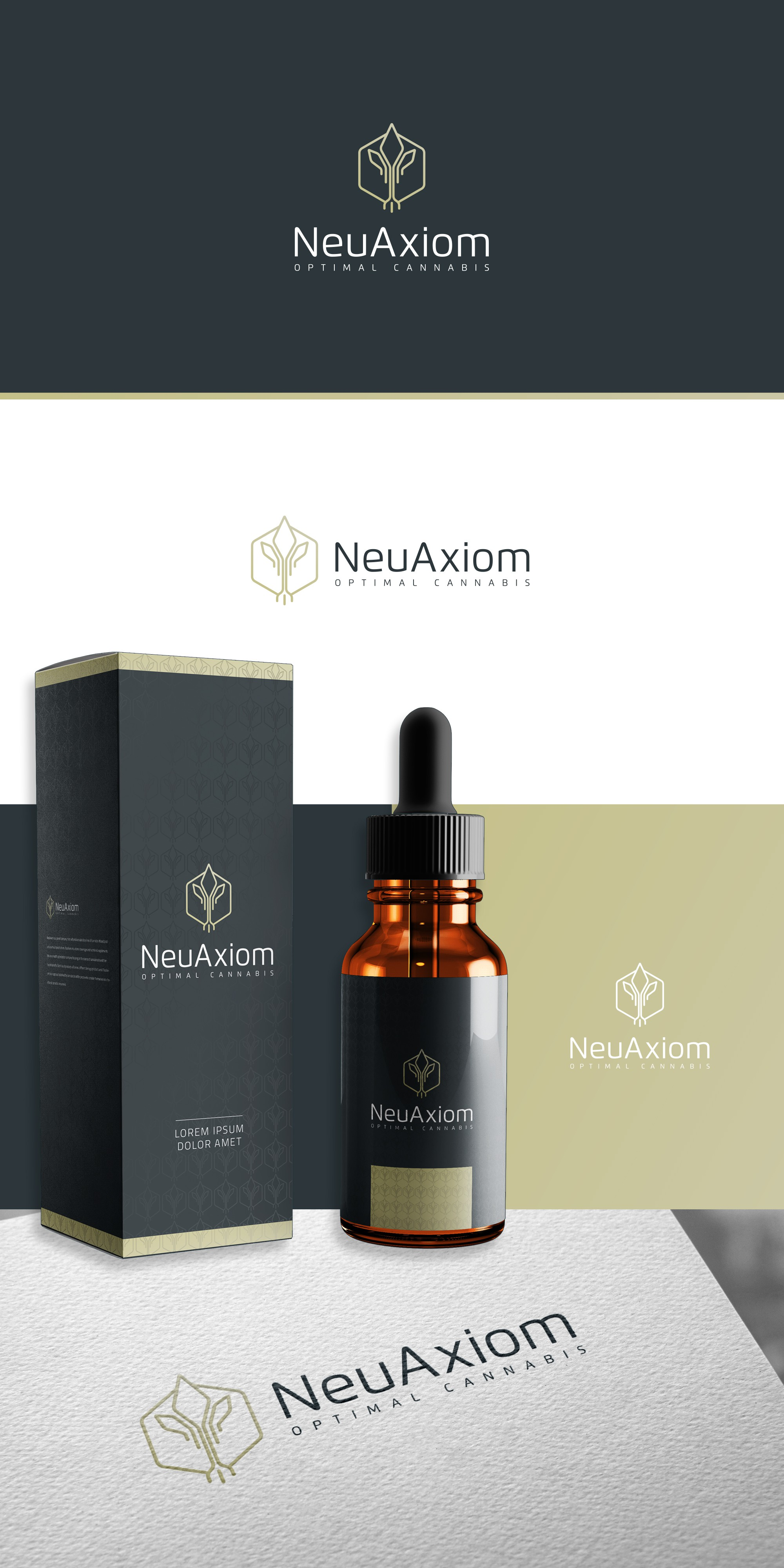 Neuaxiom Logo Design & Brand Guideline