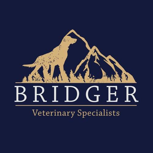 Rustic Professional vet logo