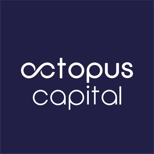 Excel Octopus Capital Vision