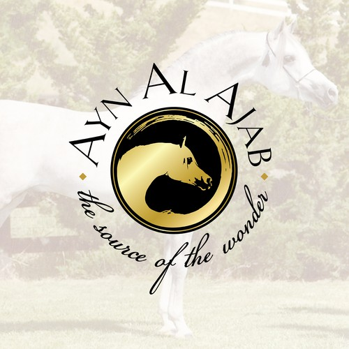 Classic Logo for Arabian Breeder