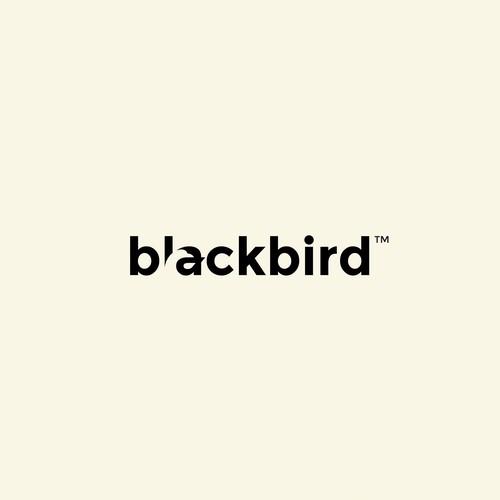 Bold logo for developer studio