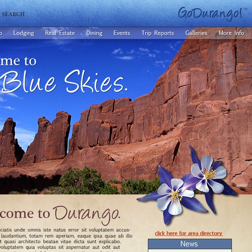 Durango Website Design