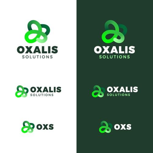 OXALIS - Logo Design