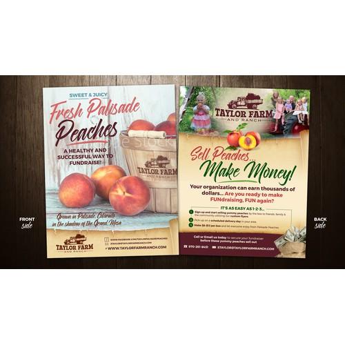 Brochure / Flyer design