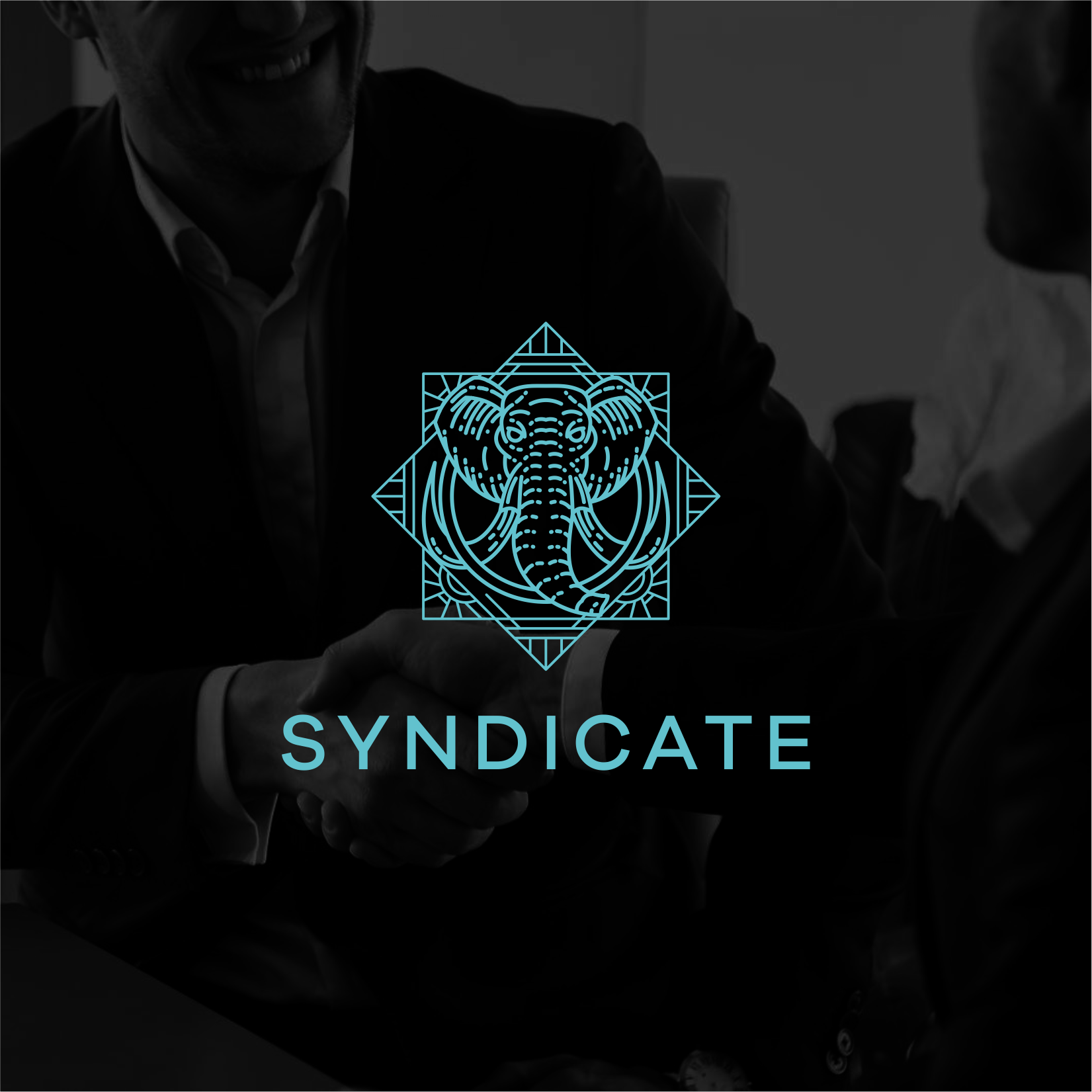 Syndicate Group needs a beautiful elephant logo to represent our brand