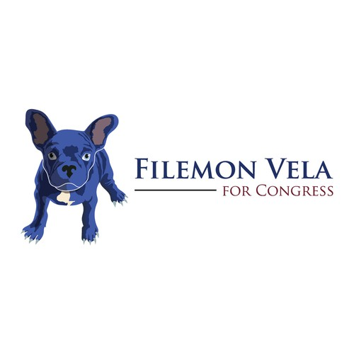 Filemon Vela for congress