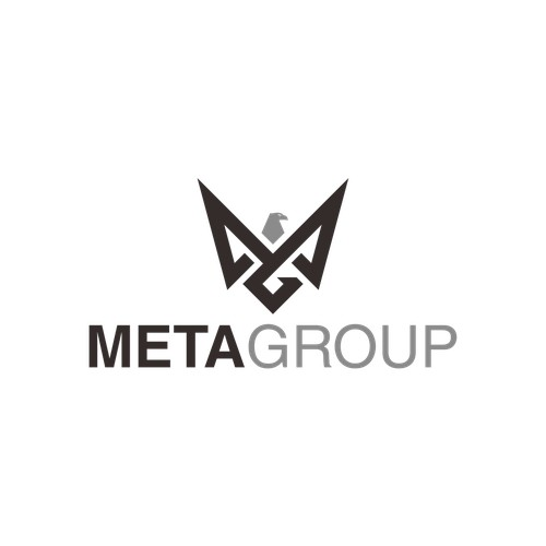 Logo Concept for MetaGroup