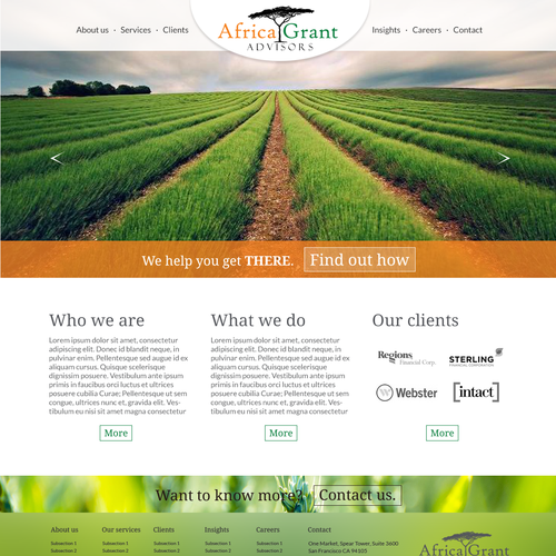 Website design for Africa-focused consultancy!