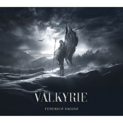 'Valkyrie' book cover