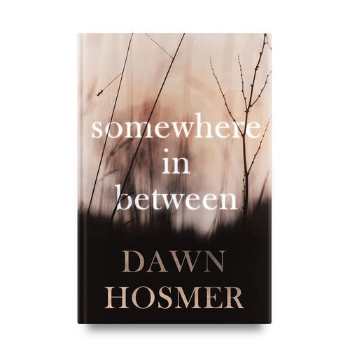 "Book cover for ""Somewhere in Between"""