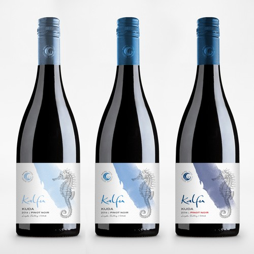 Exciting, Fun and Youthful Design For Chilean Wine