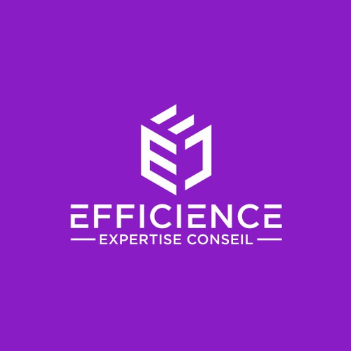EFFICIENCE EXPERTISE CONSEIL