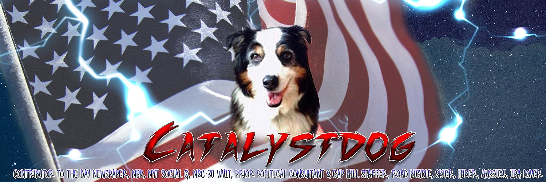 Catalystdog Logo