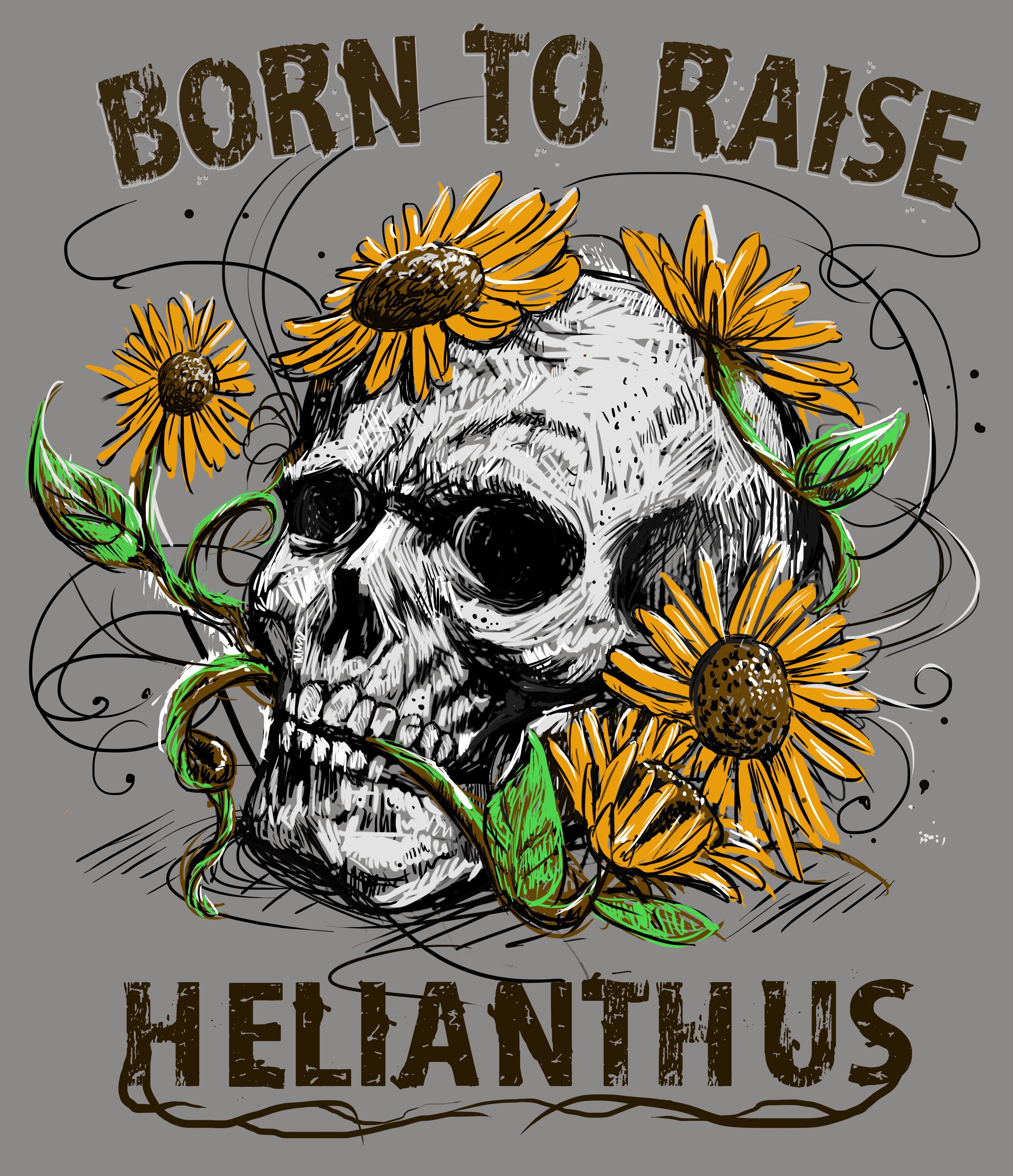 Born to raise Helianthus