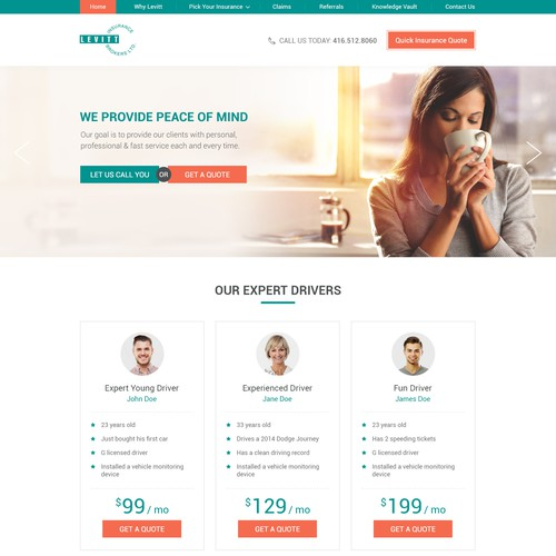 WordPress Theme Design for Insurance Company
