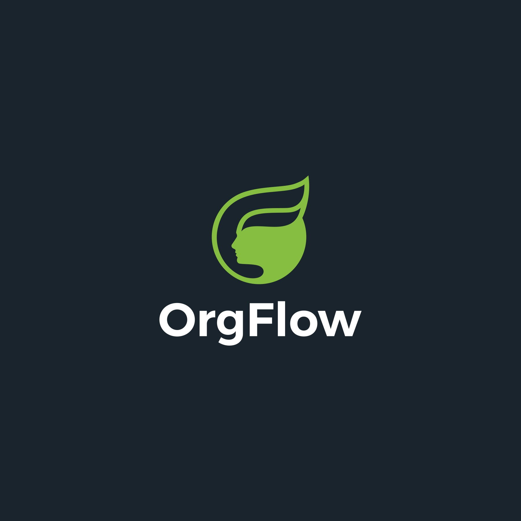 Powerful branding for IT startup in agile software development and CRM domain