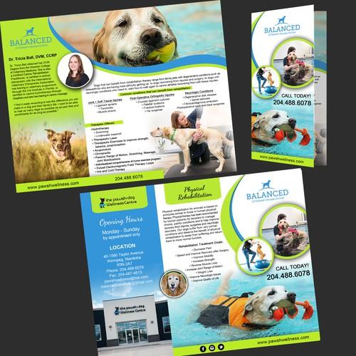 Dog Rehabilitation Brochure