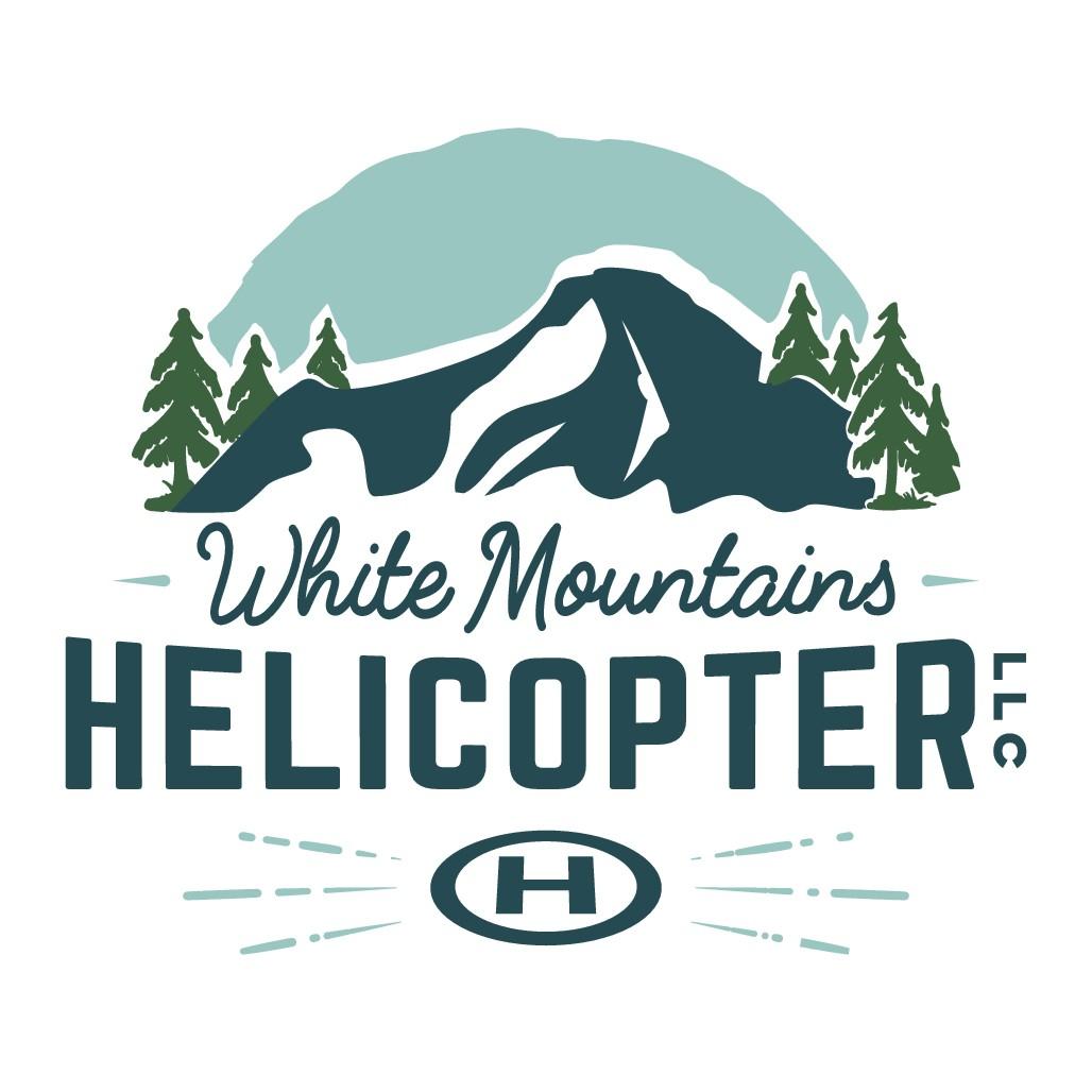 Helicopter Company Logo