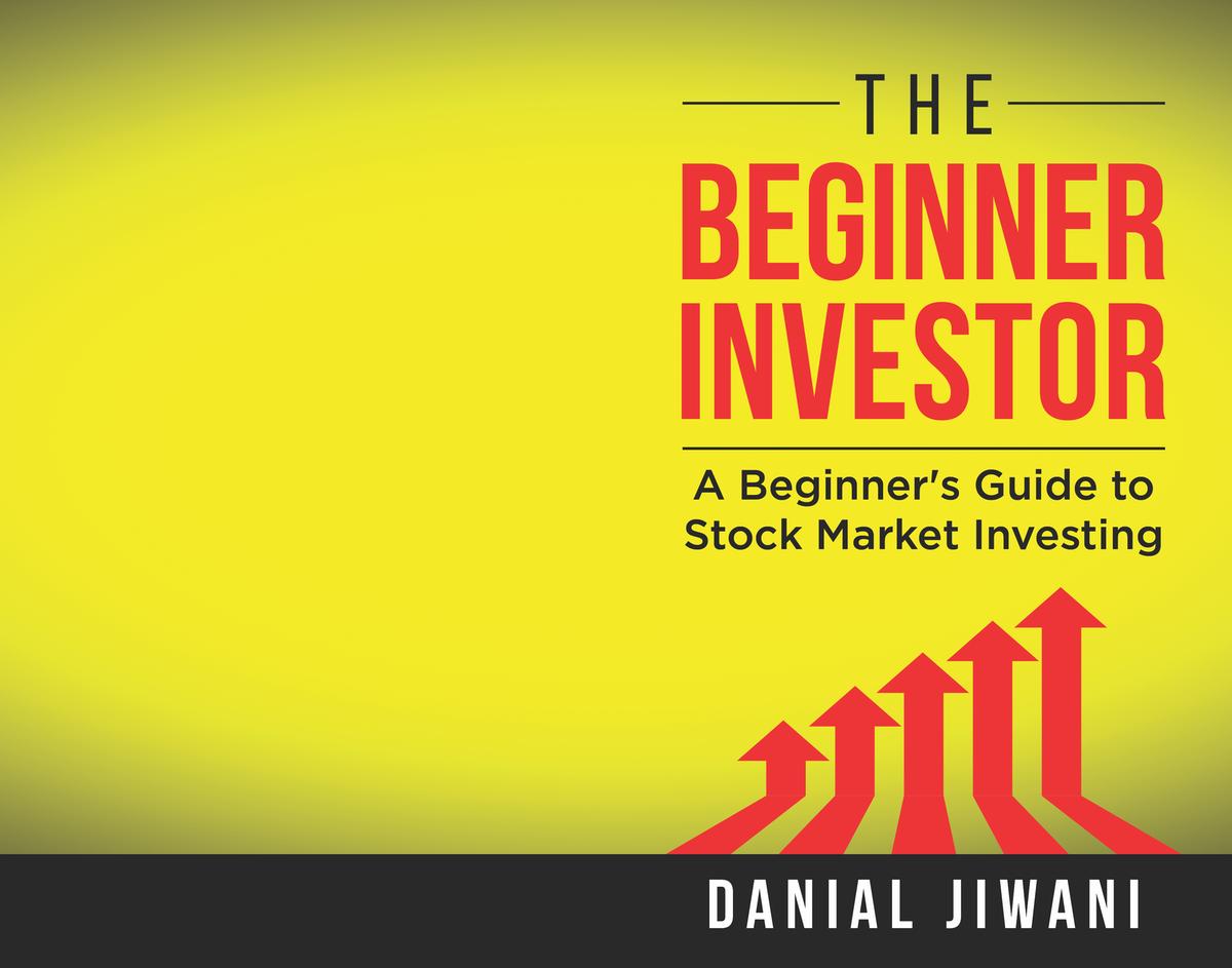 The Beginner Investor