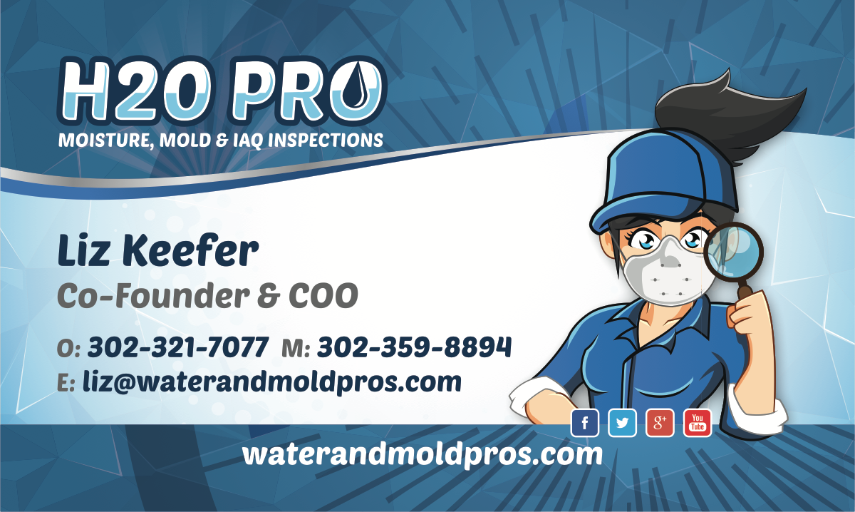 H2O PRO - IAQ Business Cards