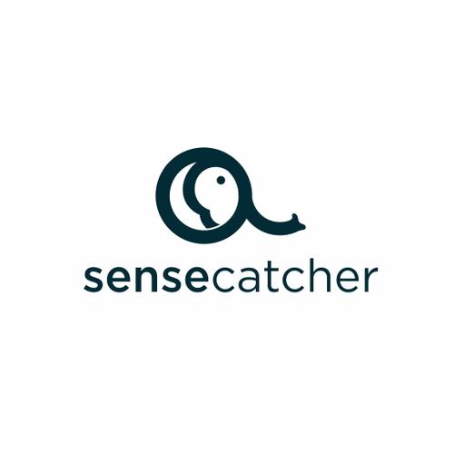 Logo Design for Visual Problem Solving Software