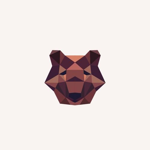 Bear geometry