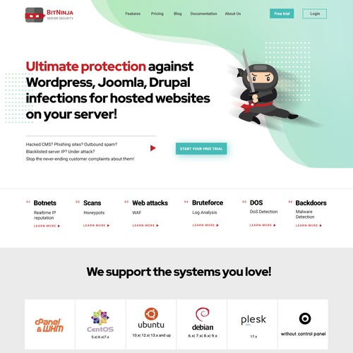 Redesign concept for Server Security company website