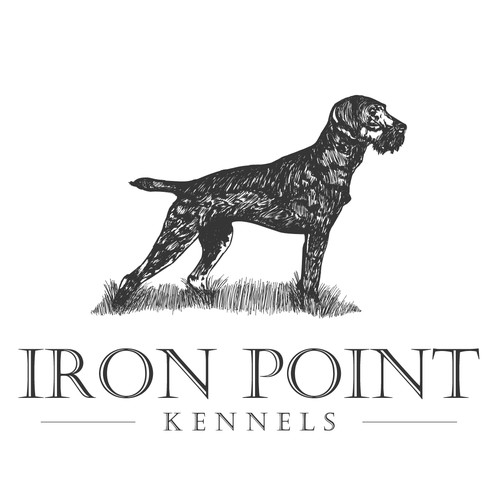 iron point