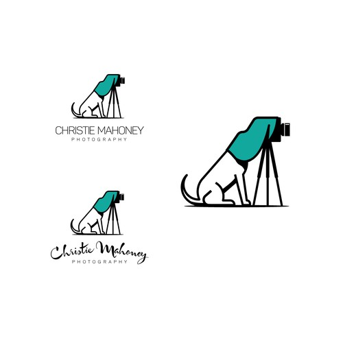 Bold Logo for pet Photographer