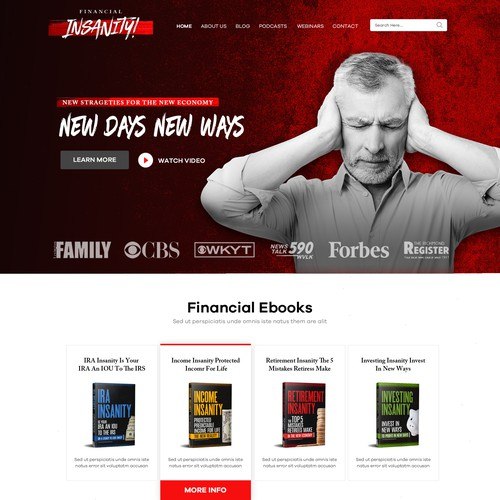 Financial Insanity WordPress Theme Design